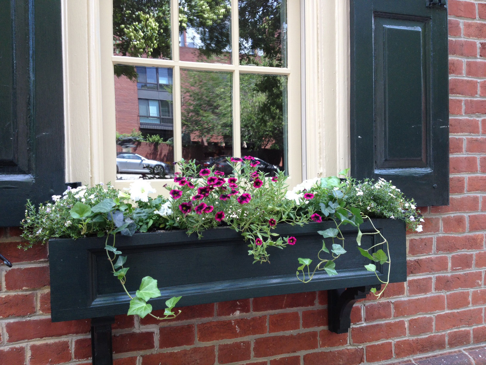 Window Boxes and Shutters 5